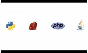 Die vier Programmiersprachen Python Ruby PHP Java