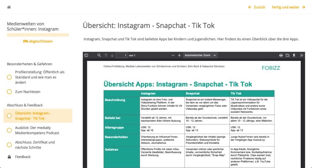 Ausschnitt Online-Fortbildung Instagram