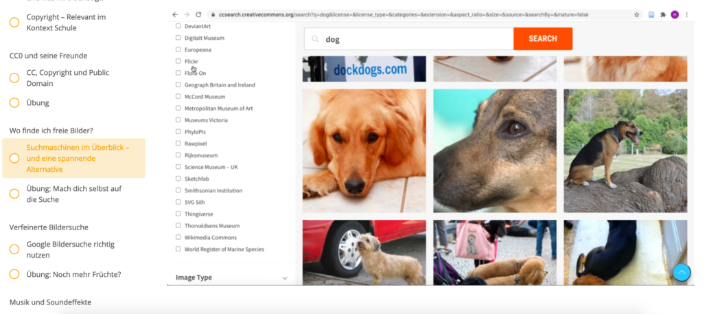 Screenshot Bildersuchmaschine: Hunde
