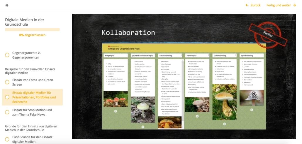Screenhot aus der Fortbildung, zu sehen ist ein Padlet, auf dem verschiedene Pilze vorgestellt werden
